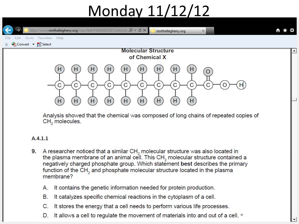 Monday 11/12/12 A scientist formed Chemical X in a laboratory.