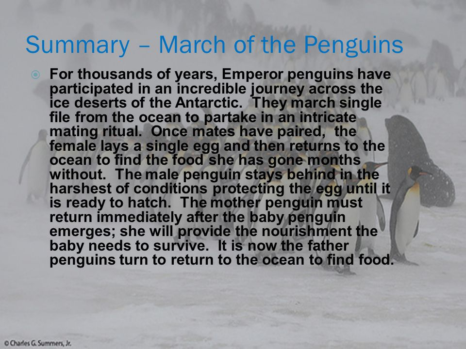 Life Science Concept #1 - Environment Cold desert/tundra  Winter temperature average – 58 ° C  Wind speed averages 44 mph  Coldest place on Earth  Penguins only Survive because of Their fat, blubber Covered bodies and Waterproof feathers.