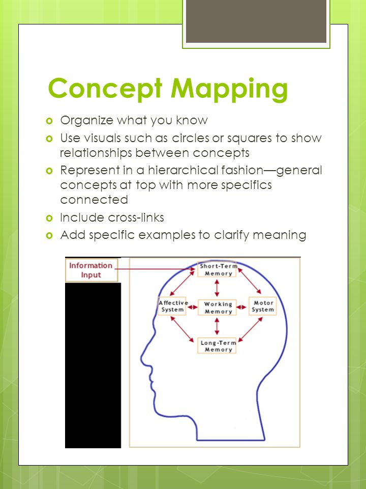 Concept Mapping  Organize what you know  Use visuals such as circles or squares to show relationships between concepts  Represent in a hierarchical fashion—general concepts at top with more specifics connected  Include cross-links  Add specific examples to clarify meaning