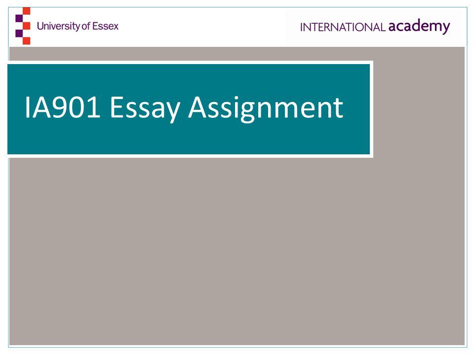 IA901 Essay Assignment