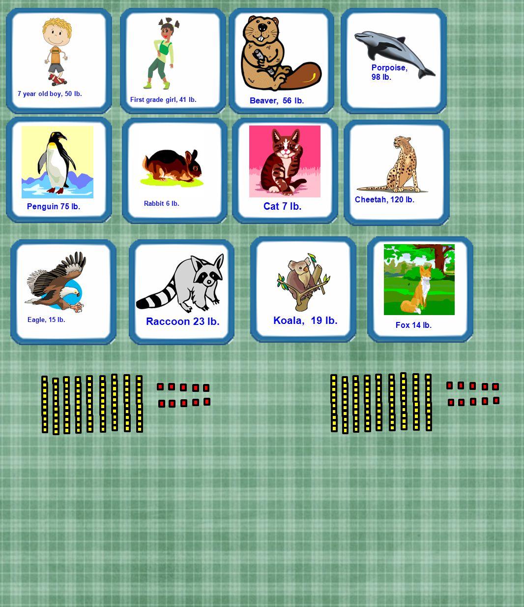 Eagle, 15 lb. Koala, 19 lb. Raccoon 23 lb. Fox 14 lb. 7 year old boy, 50 lb. First grade girl, 41 lb. Cheetah, 120 lb. Cat 7 lb. Beaver, 56 lb. Pengui