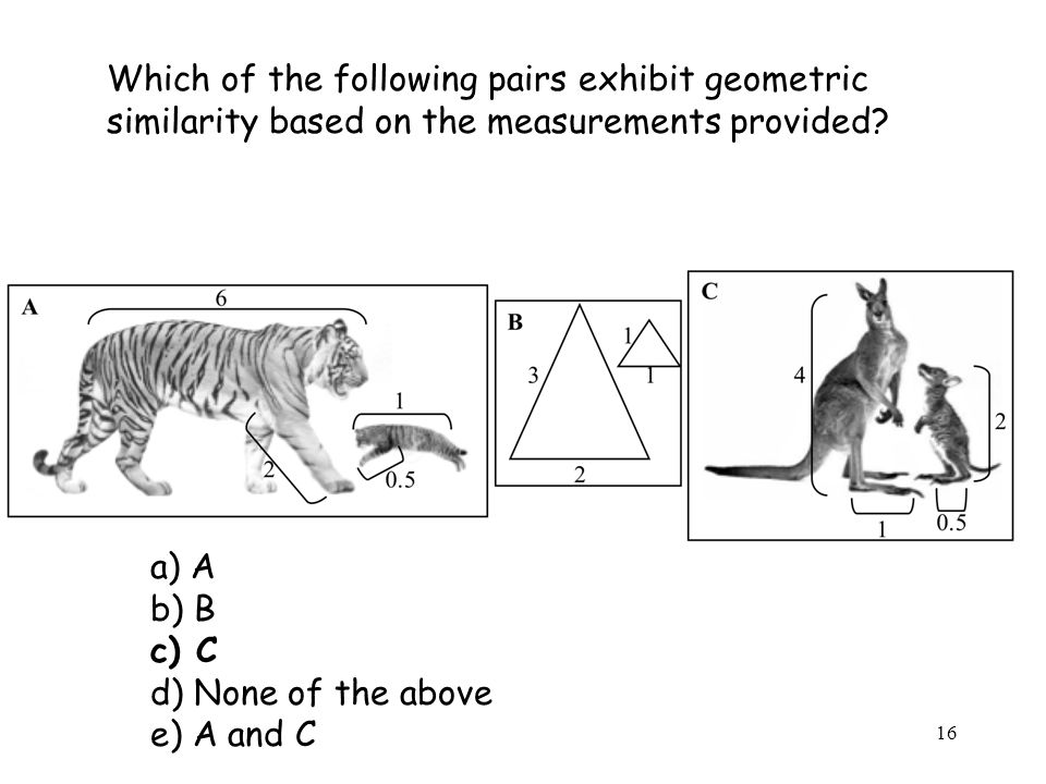 16 Which of the following pairs exhibit geometric similarity based on the measurements provided.