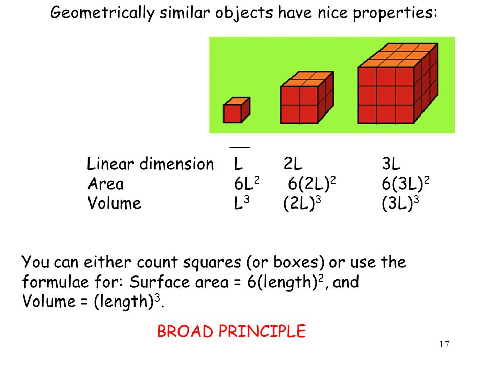 Geometrically similar objects have nice properties: Linear dimensionL2L3L Area6L 2 6(2L) 2 6(3L) 2 Volume L 3 (2L) 3 (3L) 3 You can either count squares (or boxes) or use the formulae for: Surface area = 6(length) 2, and Volume = (length) 3.