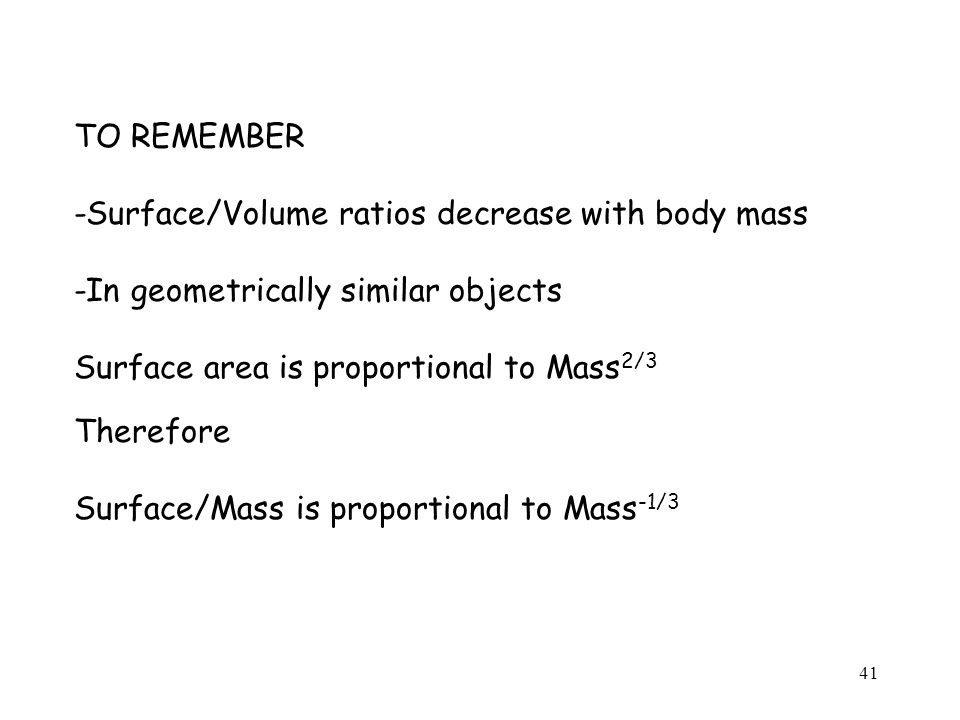 41 TO REMEMBER -Surface/Volume ratios decrease with body mass -In geometrically similar objects Surface area is proportional to Mass 2/3 Therefore Surface/Mass is proportional to Mass -1/3