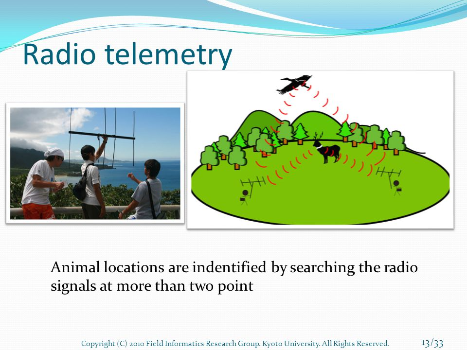 Radio telemetry Animal locations are indentified by searching the radio signals at more than two point 13/33 Copyright (C) 2010 Field Informatics Rese