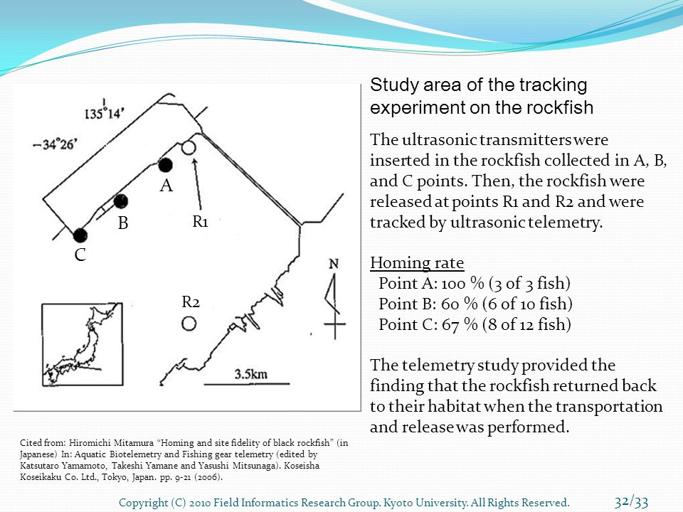 Study area of the tracking experiment on the rockfish The ultrasonic transmitters were inserted in the rockfish collected in A, B, and C points. Then,