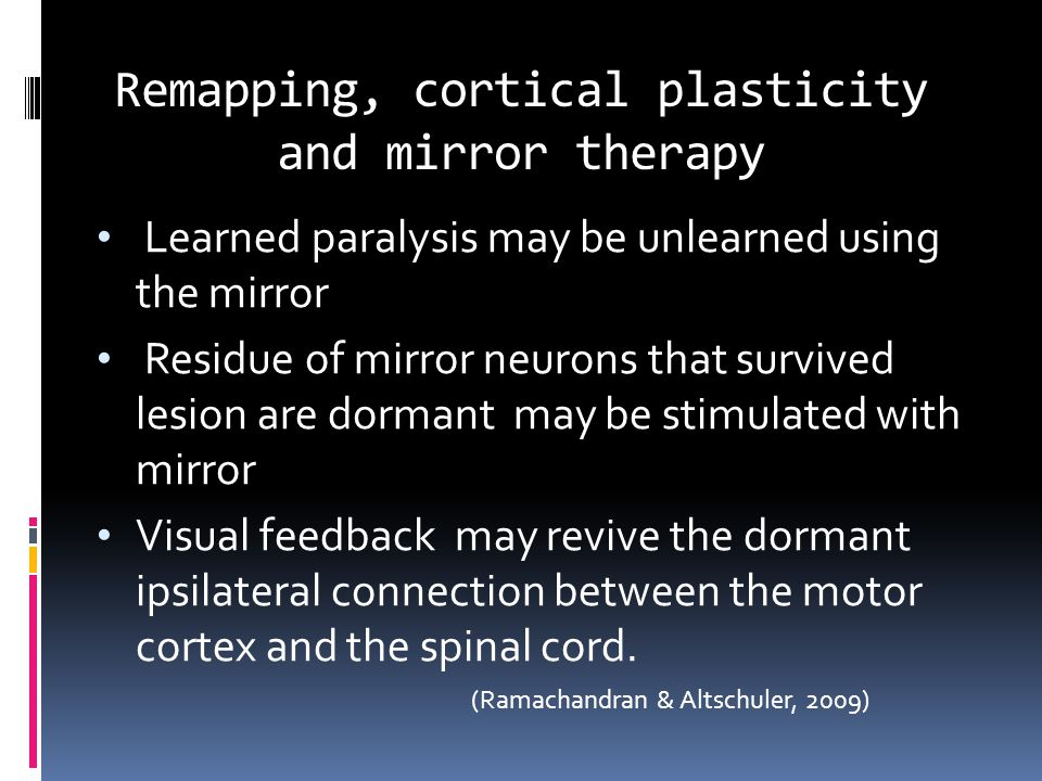Remapping, cortical plasticity and mirror therapy Learned paralysis may be unlearned using the mirror Residue of mirror neurons that survived lesion are dormant may be stimulated with mirror Visual feedback may revive the dormant ipsilateral connection between the motor cortex and the spinal cord.