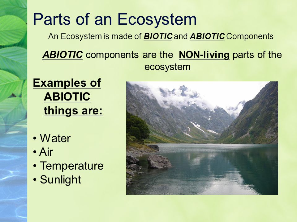 Parts of an Ecosystem An Ecosystem is made of BIOTIC and ABIOTIC Components ABIOTIC components are the NON-living parts of the ecosystem Examples of A