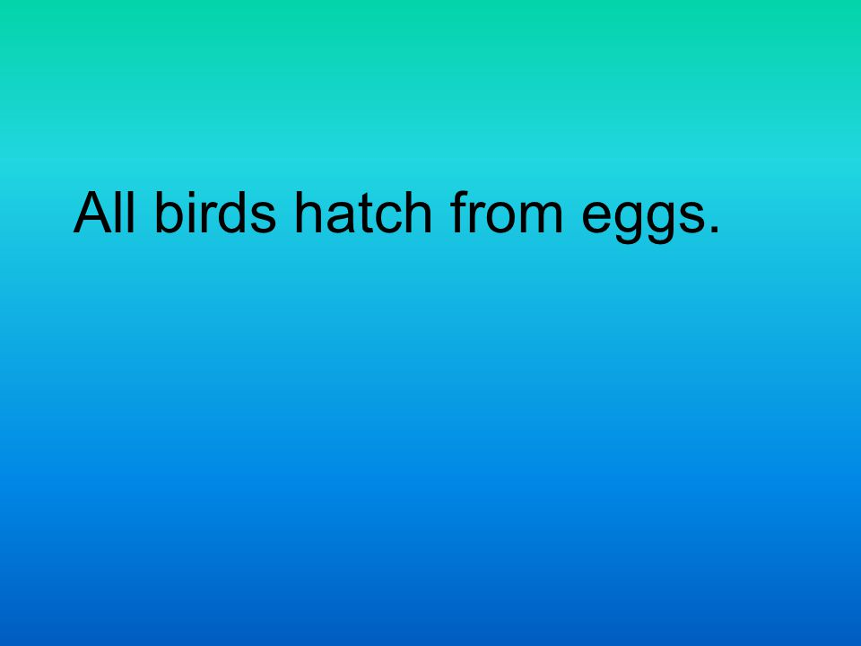 All birds hatch from eggs.