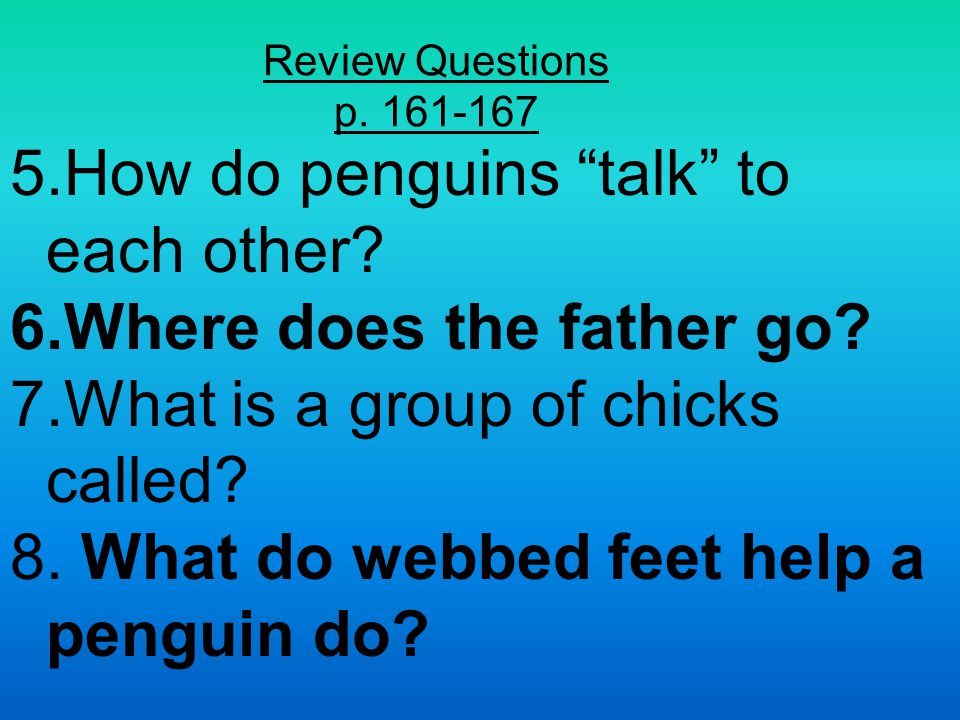 Review Questions p. 156-160 What continent are the penguins on.