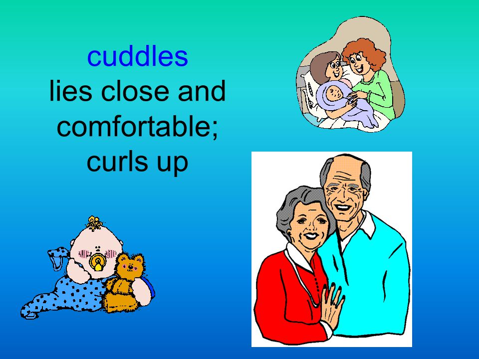 cuddles lies close and comfortable; curls up