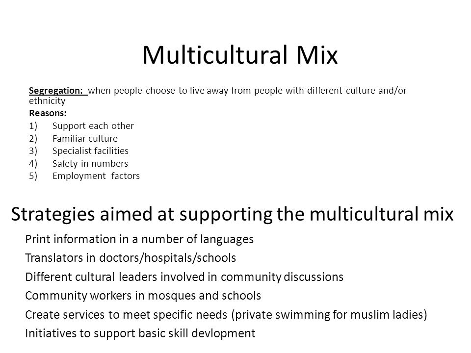 Strategies aimed at supporting the multicultural mix Print information in a number of languages Translators in doctors/hospitals/schools Different cul