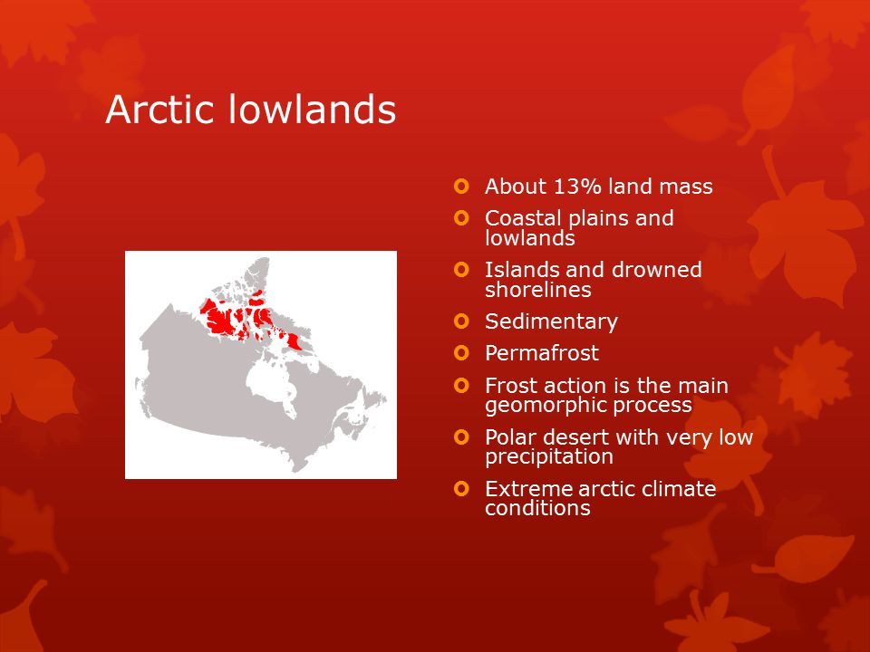 Arctic lowlands  About 13% land mass  Coastal plains and lowlands  Islands and drowned shorelines  Sedimentary  Permafrost  Frost action is the