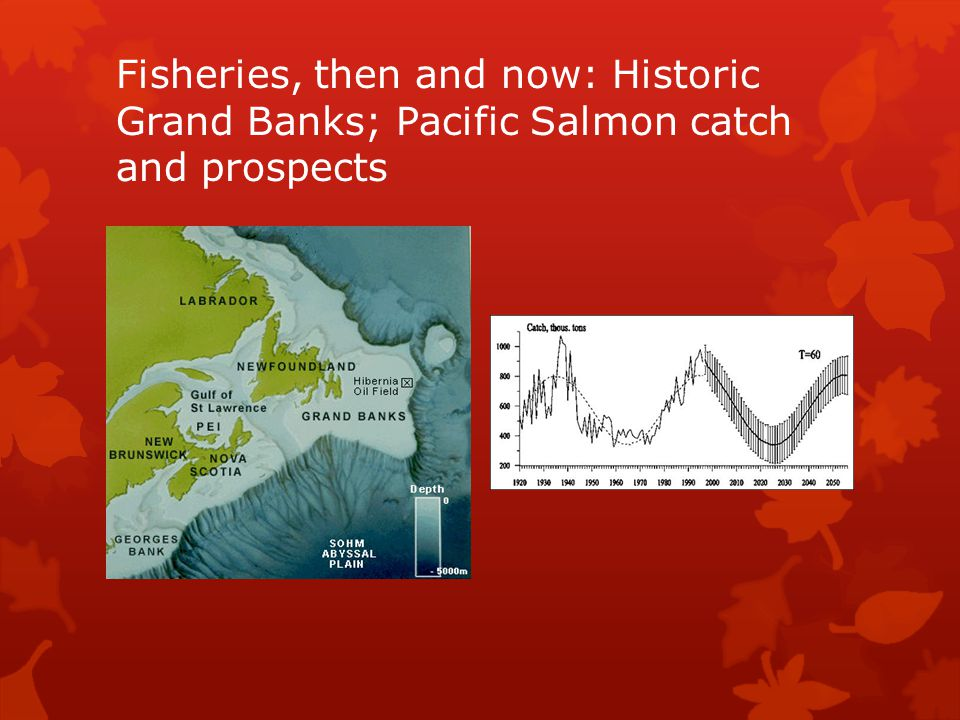 Fisheries, then and now: Historic Grand Banks; Pacific Salmon catch and prospects