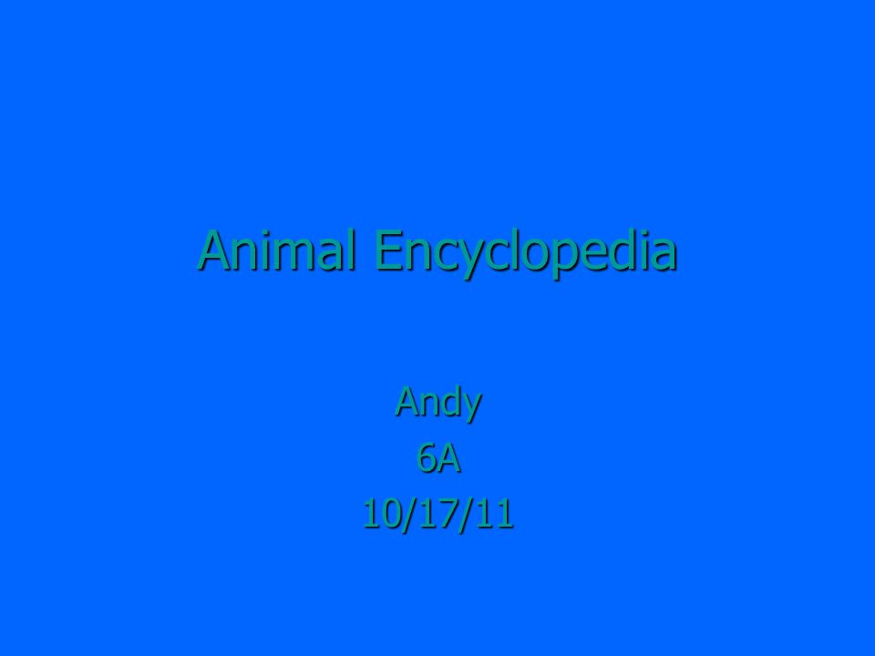 Animal Encyclopedia Andy6A10/17/11