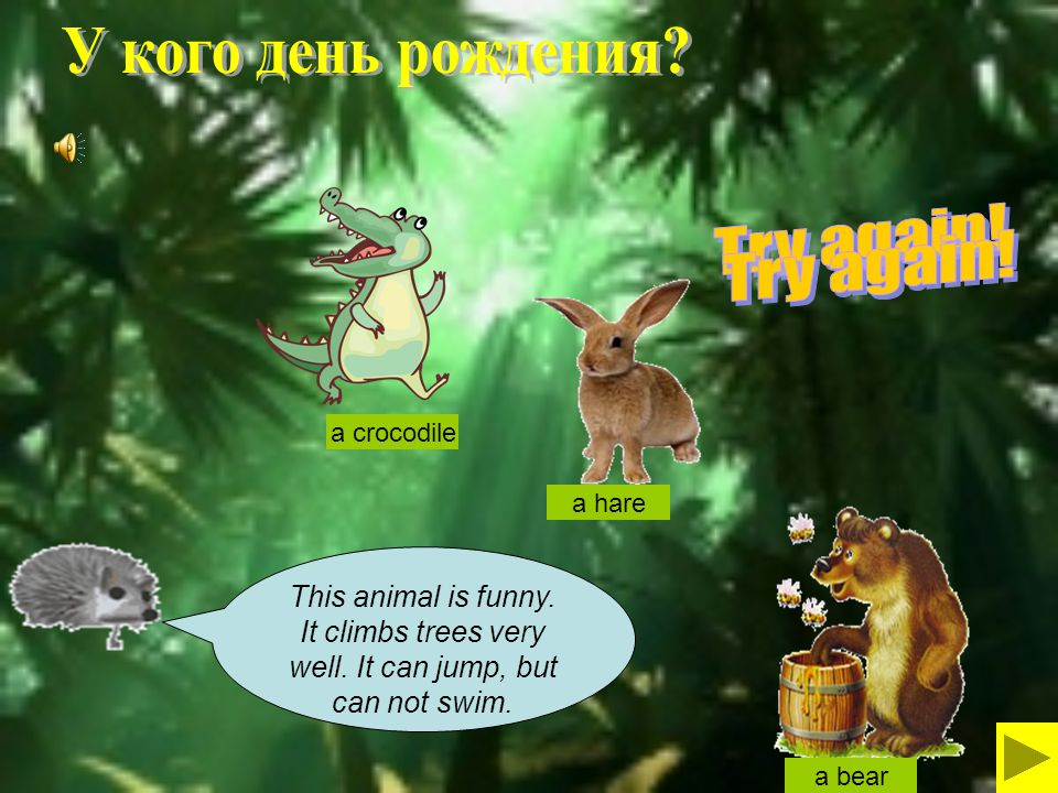 This animal is funny.It climbs trees very well. It can jump, but can not swim.