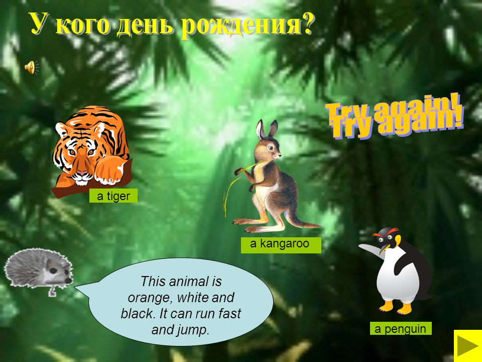 This animal is orange, white and black. It can run fast and jump. a tiger a penguin a kangaroo