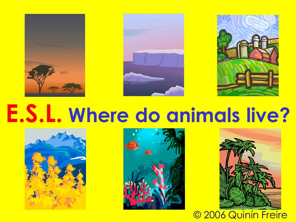 E.S.L. Where do animals live © 2006 Quinín Freire