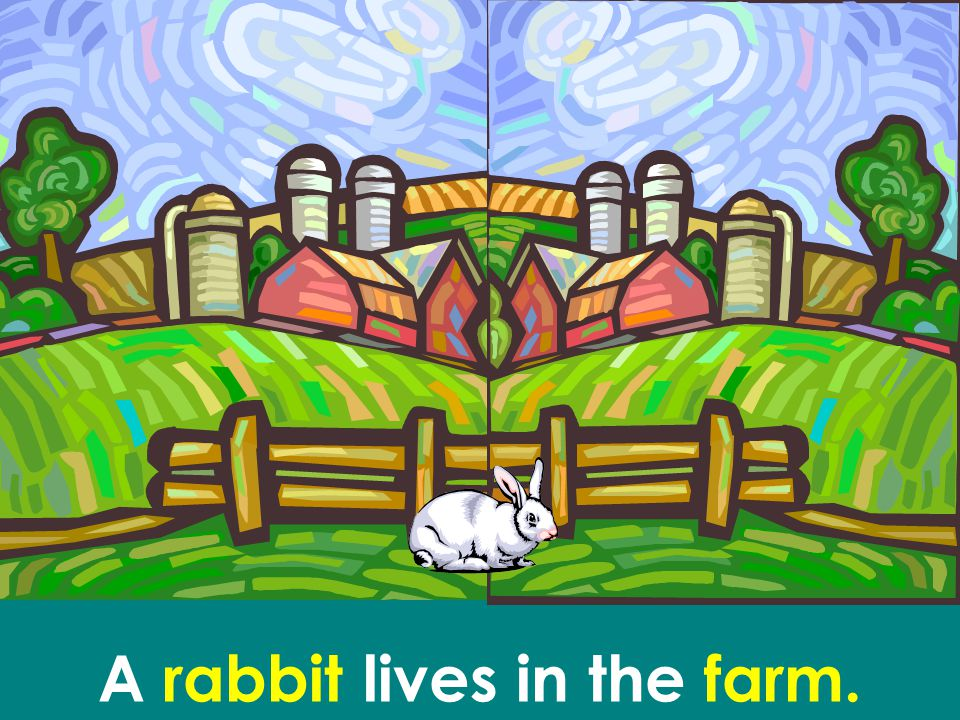 A rabbit lives in the farm.