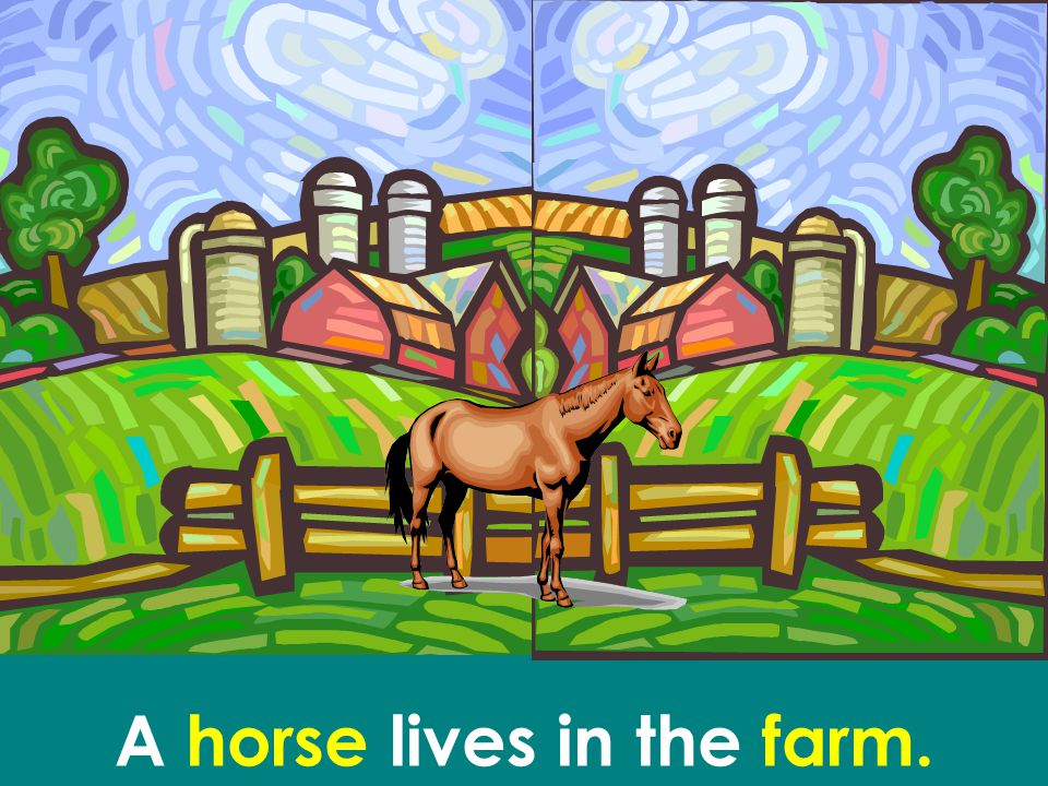 A horse lives in the farm.