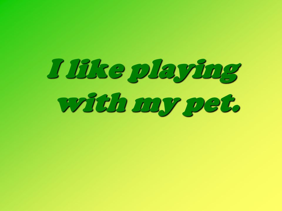 I like playing with my pet.