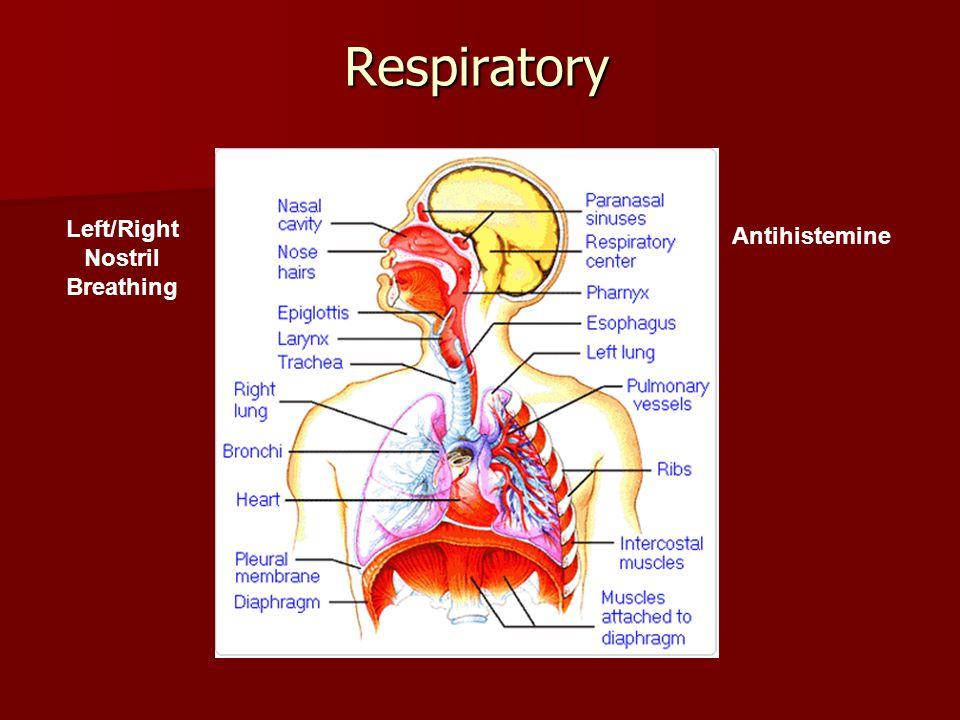 Respiratory Left/Right Nostril Breathing Antihistemine