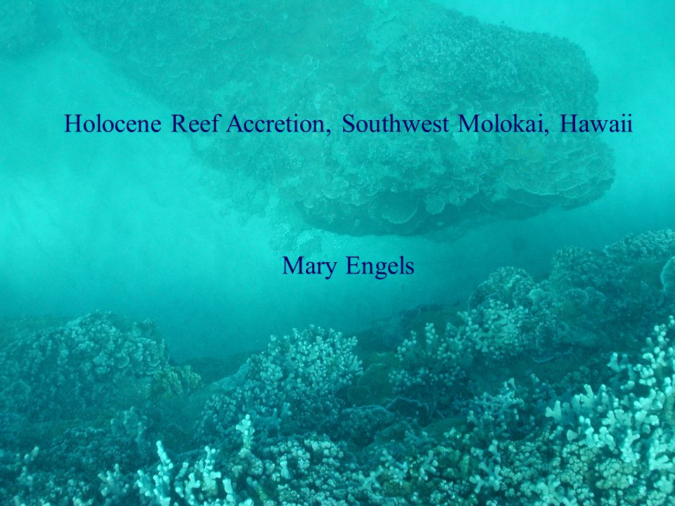 Holocene Reef Accretion, Southwest Molokai, Hawaii Mary Engels