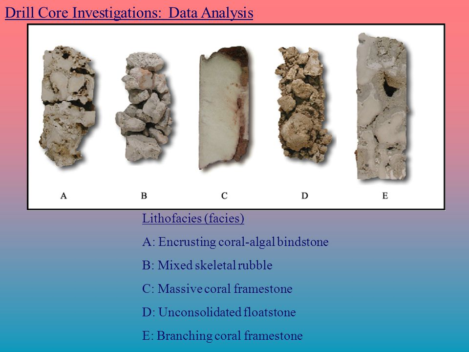 Drill Core Investigations: Data Analysis Lithofacies (facies) A: Encrusting coral-algal bindstone B: Mixed skeletal rubble C: Massive coral framestone D: Unconsolidated floatstone E: Branching coral framestone