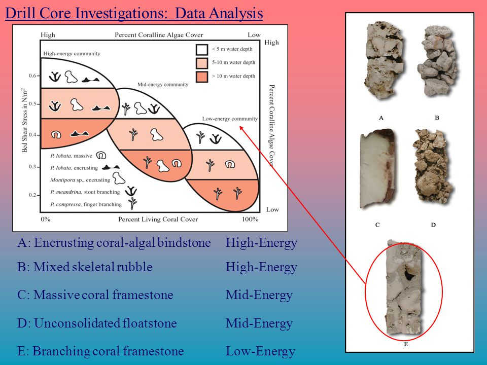 Drill Core Investigations: Data Analysis E: Branching coral framestone Low-Energy A: Encrusting coral-algal bindstone High-Energy B: Mixed skeletal rubble High-Energy C: Massive coral framestone Mid-Energy D: Unconsolidated floatstone Mid-Energy