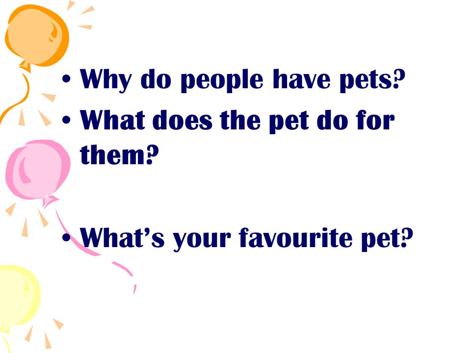 Why do people have pets What does the pet do for them What's your favourite pet