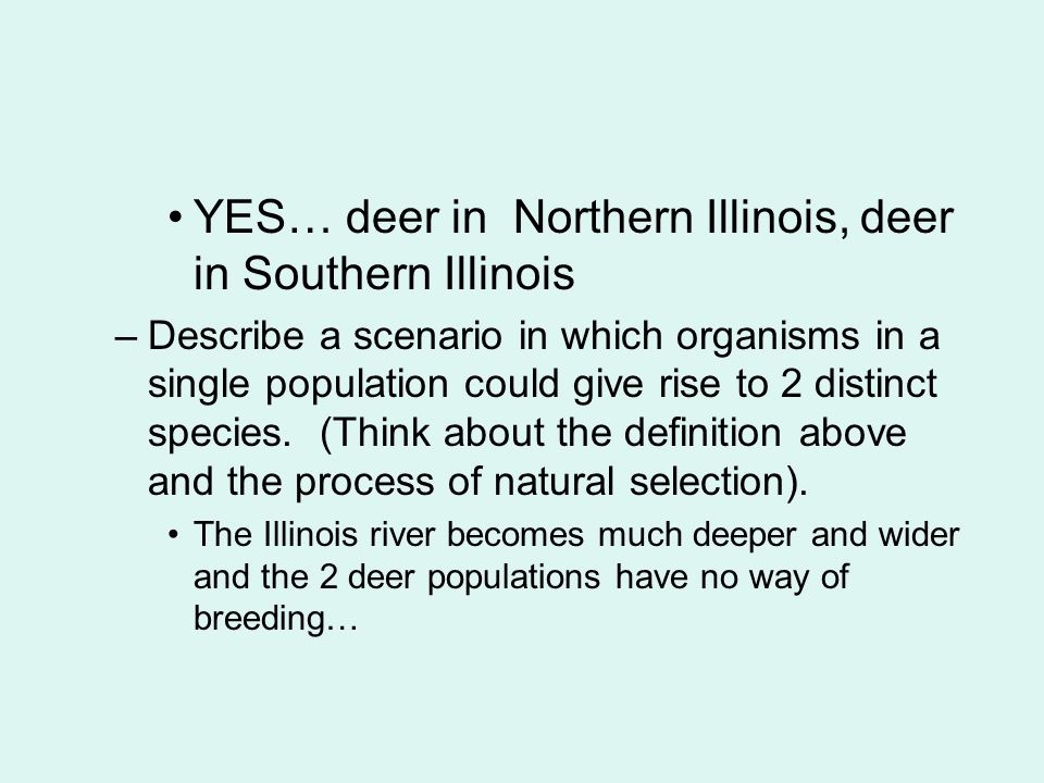YES… deer in Northern Illinois, deer in Southern Illinois –Describe a scenario in which organisms in a single population could give rise to 2 distinct species.