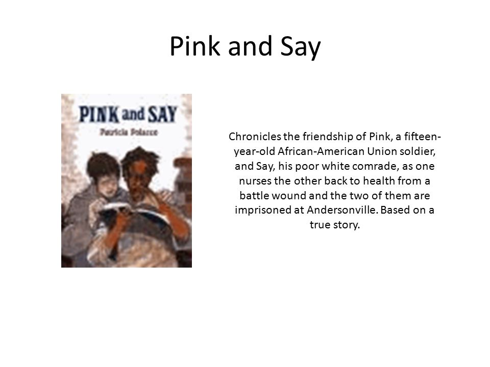 Pink and Say Chronicles the friendship of Pink, a fifteen- year-old African-American Union soldier, and Say, his poor white comrade, as one nurses the other back to health from a battle wound and the two of them are imprisoned at Andersonville.