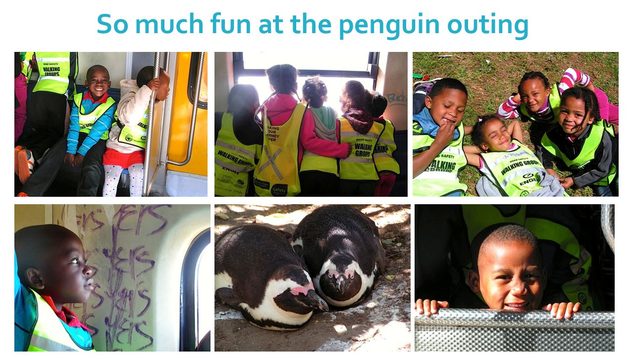 So much fun at the penguin outing
