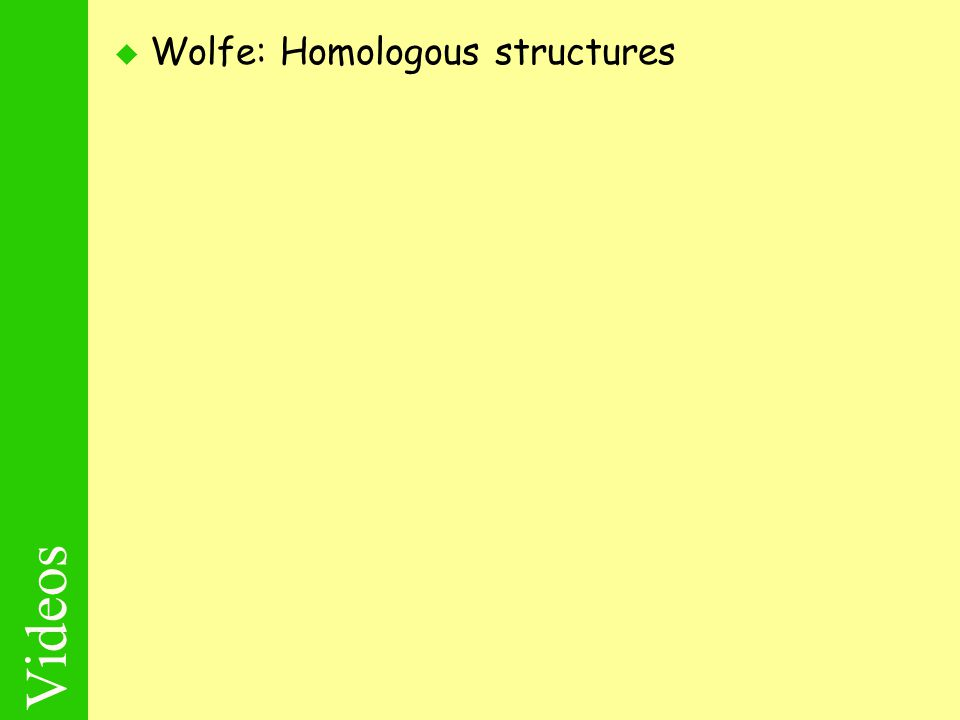 Videos  Wolfe: Homologous structures