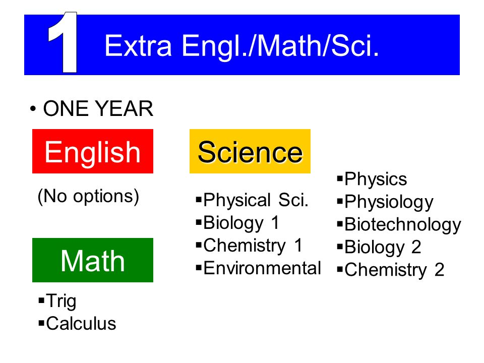 Extra Engl./Math/Sci. ONE YEAR EnglishScience (No options)  Physics  Physiology  Biotechnology  Biology 2  Chemistry 2  Physical Sci.  Biology