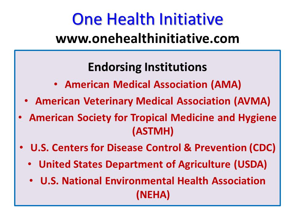 One Health Initiative One Health Initiative www.onehealthinitiative.com Endorsing Institutions American Medical Association (AMA) American Veterinary Medical Association (AVMA) American Society for Tropical Medicine and Hygiene (ASTMH) U.S.