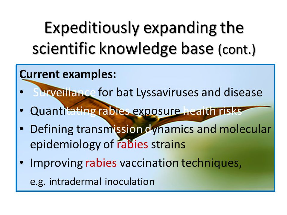 Expeditiously expanding the scientific knowledge base (cont.) Current examples: Surveillance for bat Lyssaviruses and disease Quantitating rabies exposure health risks Defining transmission dynamics and molecular epidemiology of rabies strains Improving rabies vaccination techniques, e.g.