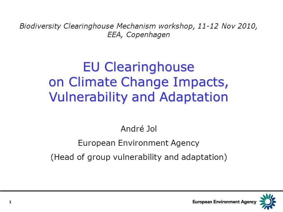 12 Added value of the European Clearinghouse A portal of information and tools, with defined quality standards, seeking common approaches at EU level.