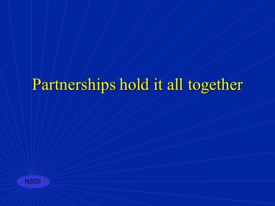 NSDI Partnerships
