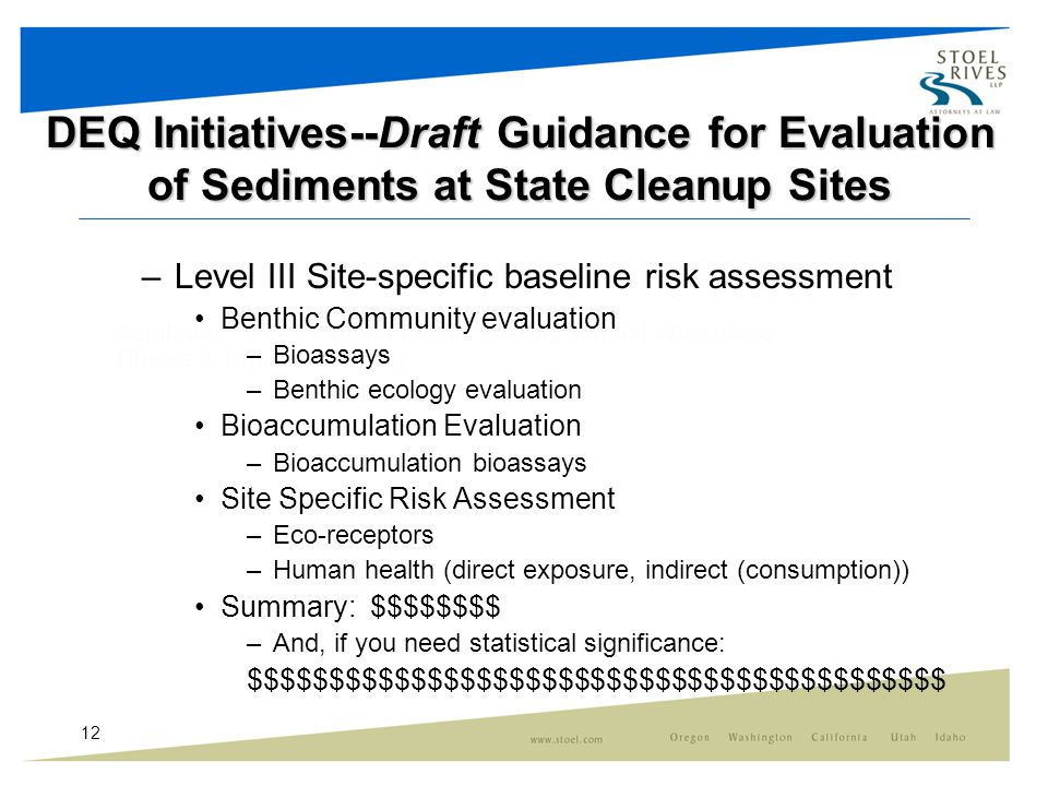 12 DEQ Initiatives--Draft Guidance for Evaluation of Sediments at State Cleanup Sites –Level III Site-specific baseline risk assessment Benthic Community evaluation –Bioassays –Benthic ecology evaluation Bioaccumulation Evaluation –Bioaccumulation bioassays Site Specific Risk Assessment –Eco-receptors –Human health (direct exposure, indirect (consumption)) Summary: $$$$$$$$ –And, if you need statistical significance: $$$$$$$$$$$$$$$$$$$$$$$$$$$$$$$$$$$$$$$$$$$