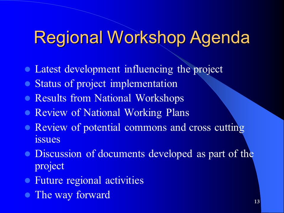 13 Regional Workshop Agenda Latest development influencing the project Status of project implementation Results from National Workshops Review of Nati