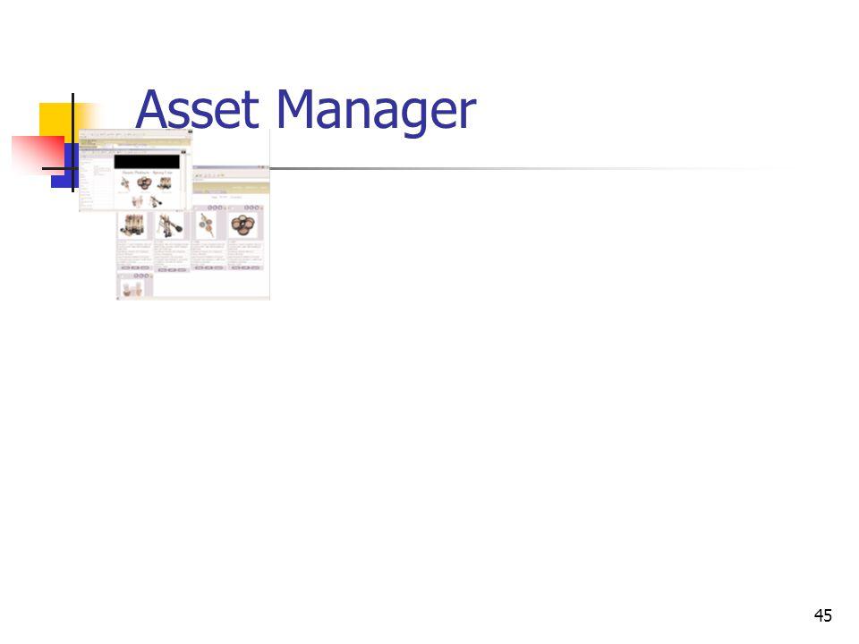 45 Asset Manager