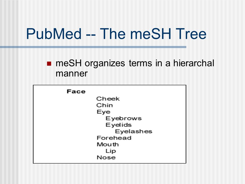 PubMed -- The meSH Tree meSH organizes terms in a hierarchal manner