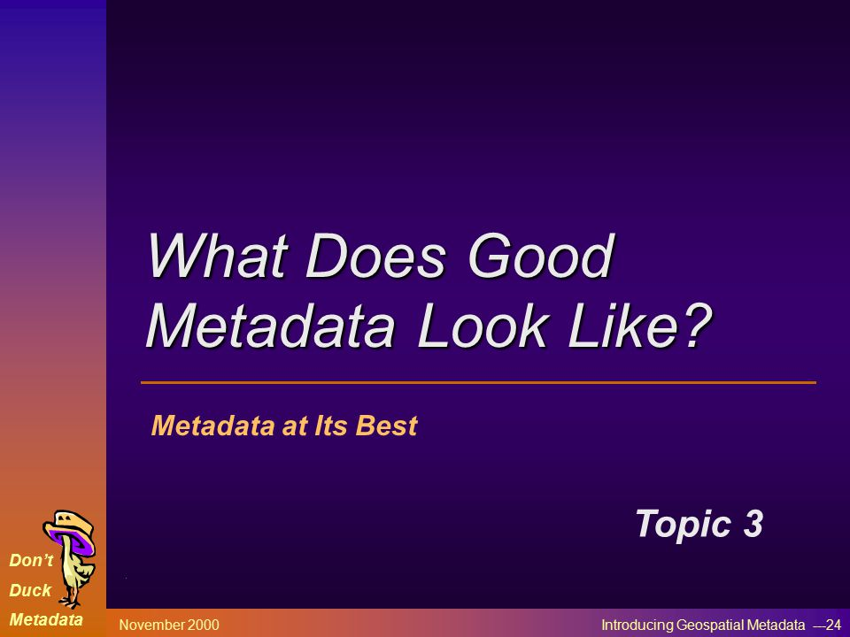 Don't Duck Metadata November 2000 Introducing Geospatial Metadata ---24 Metadata at Its Best Topic 3 What Does Good Metadata Look Like?
