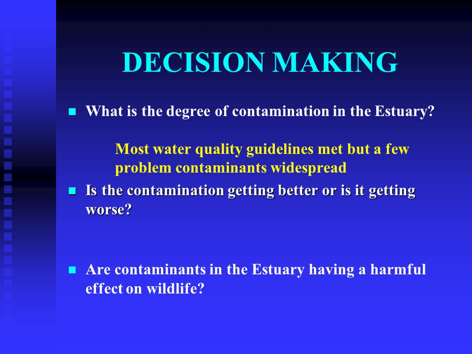 DECISION MAKING What is the degree of contamination in the Estuary.