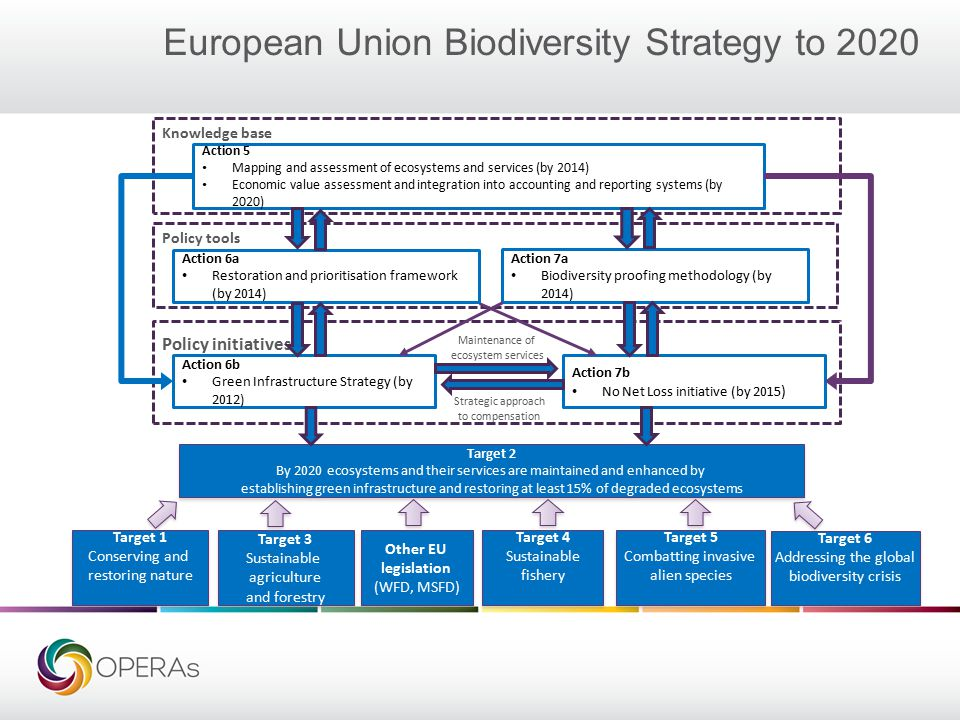 European Union Biodiversity Strategy to 2020 Action 5 Mapping and assessment of ecosystems and services (by 2014) Economic value assessment and integration into accounting and reporting systems (by 2020) Action 6a Restoration and prioritisation framework (by 2014) Action 7a Biodiversity proofing methodology (by 2014) Action 6b Green Infrastructure Strategy (by 2012) Action 7b No Net Loss initiative (by 2015 ) Target 2 By 2020 ecosystems and their services are maintained and enhanced by establishing green infrastructure and restoring at least 15% of degraded ecosystems Target 2 By 2020 ecosystems and their services are maintained and enhanced by establishing green infrastructure and restoring at least 15% of degraded ecosystems Target 1 Conserving and restoring nature Target 1 Conserving and restoring nature Target 3 Sustainable agriculture and forestry Target 3 Sustainable agriculture and forestry Target 4 Sustainable fishery Target 4 Sustainable fishery Target 5 Combatting invasive alien species Target 5 Combatting invasive alien species Other EU legislation (WFD, MSFD) Other EU legislation (WFD, MSFD) Knowledge base Policy tools Policy initiatives Maintenance of ecosystem services Strategic approach to compensation Baseline Target 6 Addressing the global biodiversity crisis Target 6 Addressing the global biodiversity crisis