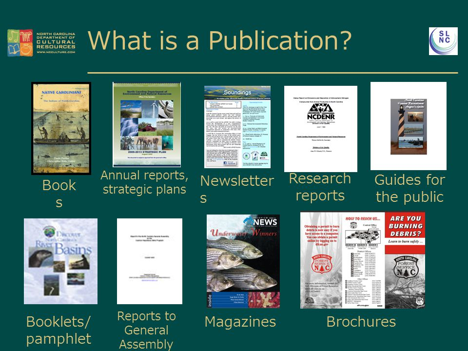 Book s Annual reports, strategic plans Newsletter s Research reports Guides for the public Booklets/ pamphlet s Reports to General Assembly Magazines Brochures