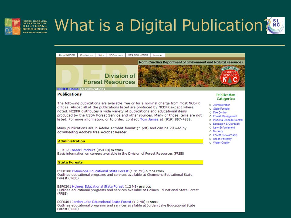 What is a Digital Publication?