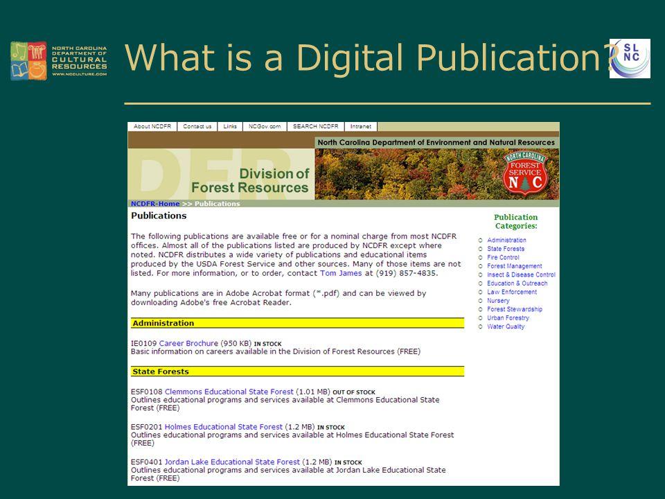 What is a Digital Publication