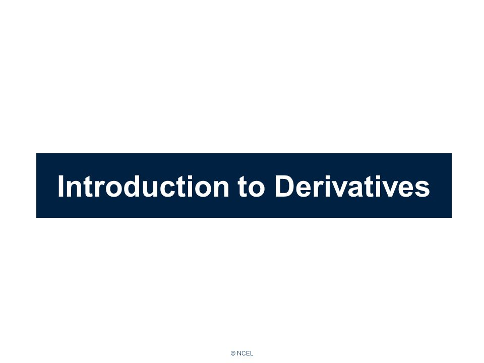 © NCEL Introduction to Derivatives
